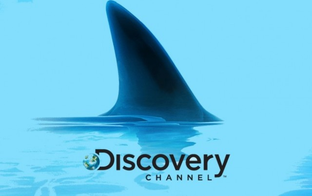 discovery-channel-shark-681x428